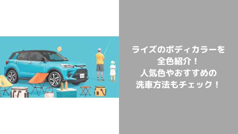 ライズボディカラー紹介
